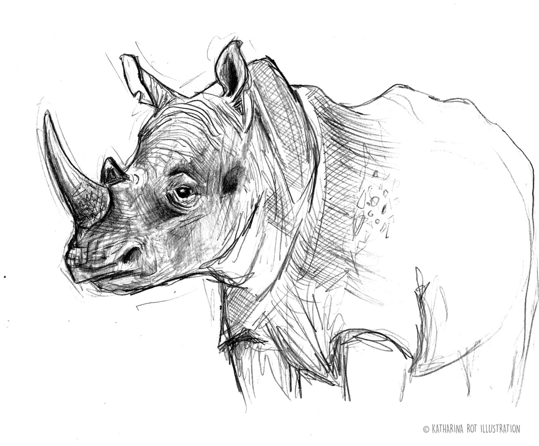 rhino-katharinarot_rotwebseite