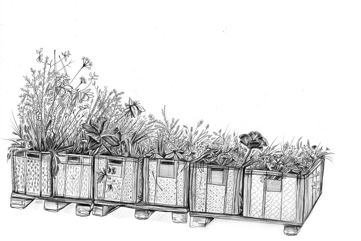 gartedeck-zeichnung-rotwebseite