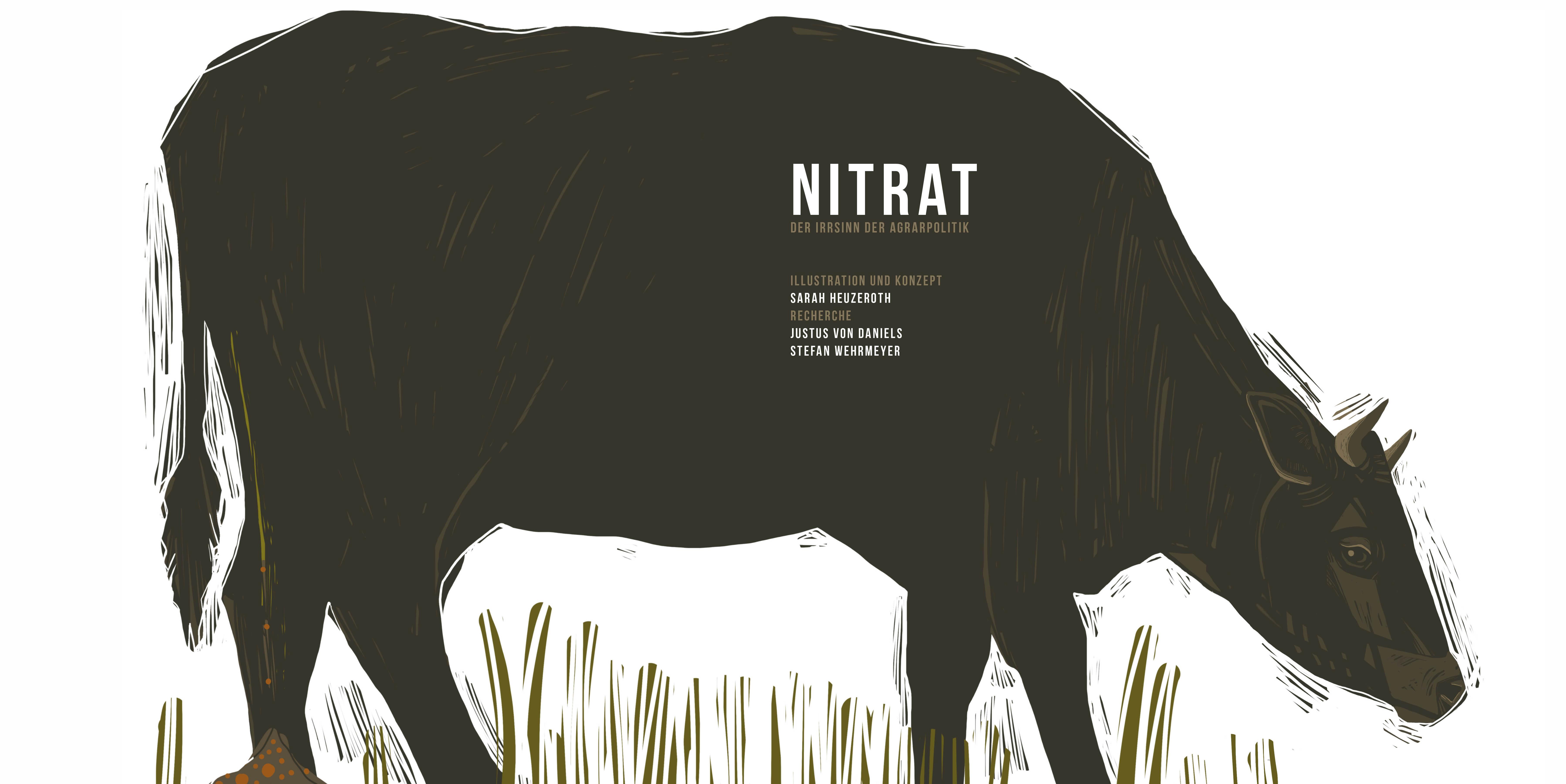 nitrat-teaser-webseite_format_rotwebseite