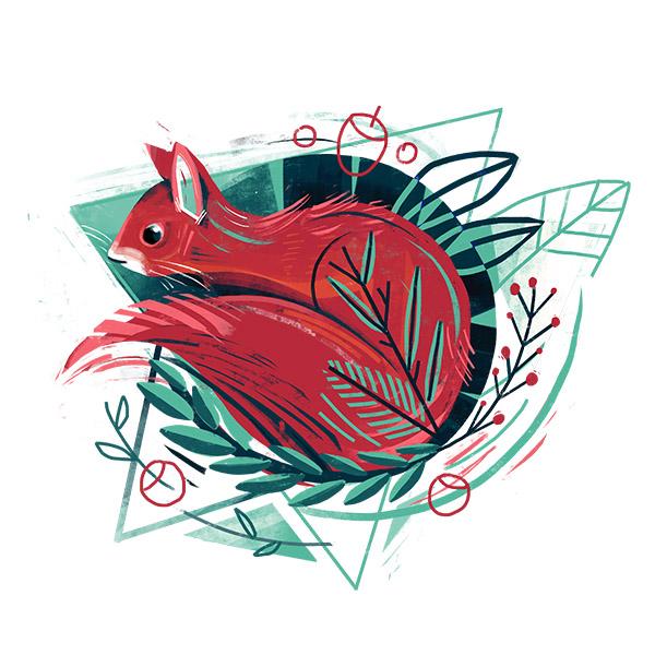 Timmy-Illustration_vorschaubild_rotwebseite