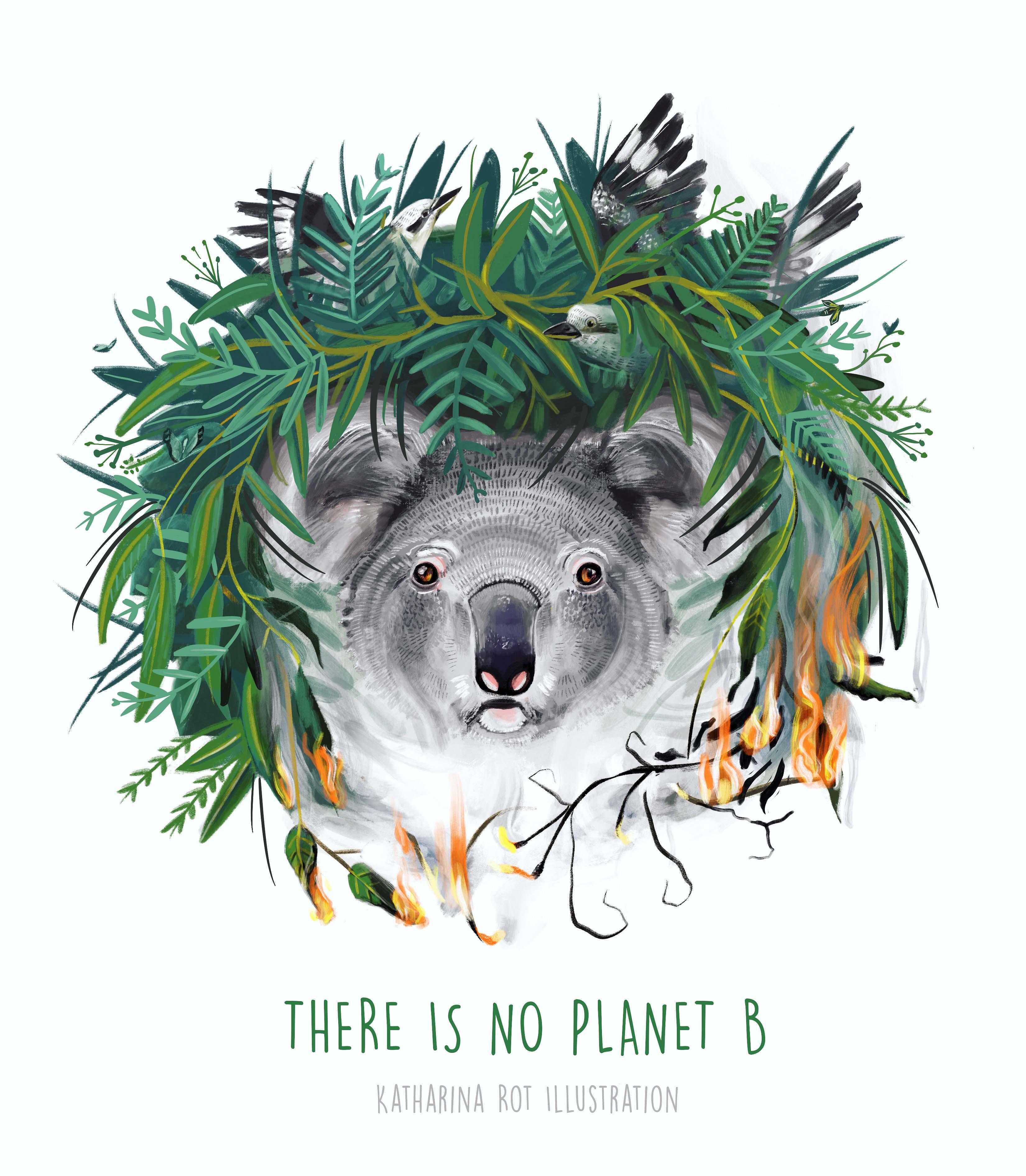 Australian_fire_planetb_illustration_insta_kl