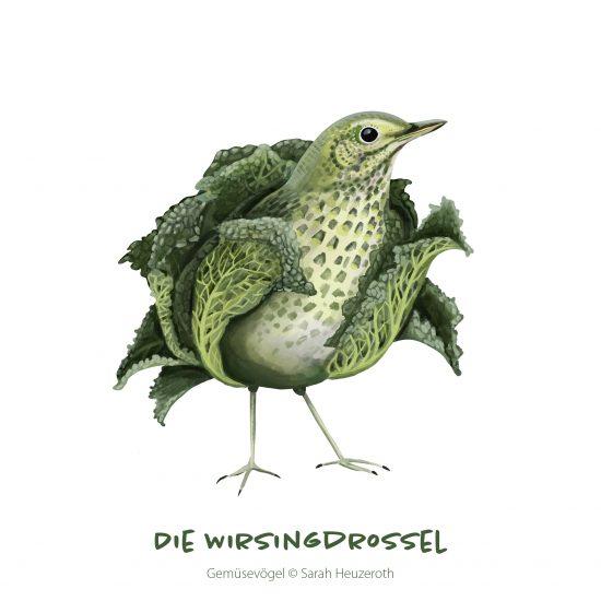 AlleGemüsevögel_quadratisch23