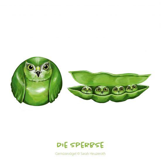 Gemüsevögel_SarahHeuzeroth9
