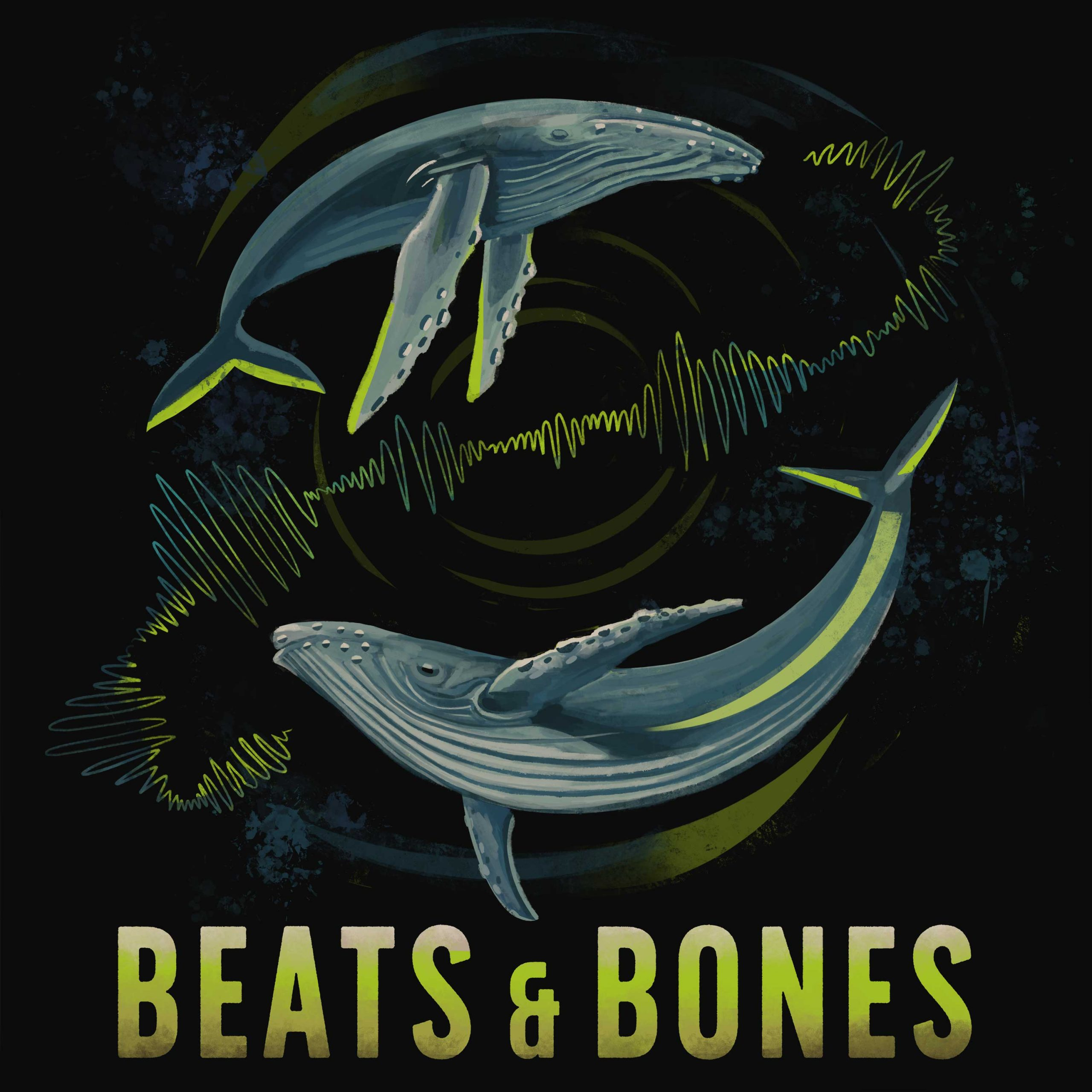 210118_Beats_and_Bones2_Folge-Icon2_3000px